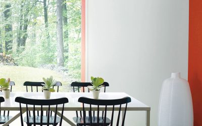 DINING ROOM COLOR